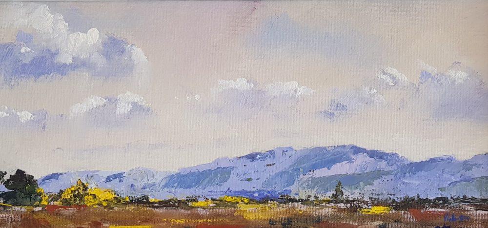 Midday Light Strathearn Hills Perthshire